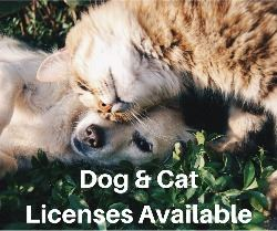 Dog and Cat Licenses Available
