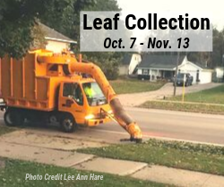 Leaf Collection - October 7 through November 13, Photo Credit Lee Ann Hare