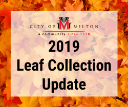 2019 Leaf Collection Update