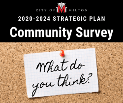 Strategic Plan - Community Survey