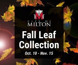 Fall Leaf Collection, October 10 through November 15